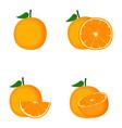 orange whole fruit slice vector image vector image