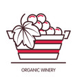 organic winery promotional poster with basket full vector image