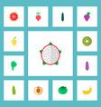 set of berry icons flat style symbols with kiwi vector image