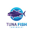 tuna logo design vector image