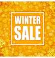 Winter sale inscription on background with vector image vector image