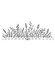 background with hand drawn herbs and flowers vector image