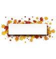 Autumn banner with maple leaves vector image vector image