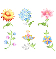 flower branches set vector image vector image
