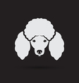 image of an dog poodle face vector image