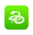 mexican kingsnake icon green vector image vector image