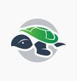 modern sea turtle logo vector image