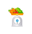 scales with fruit isolated on white vector image vector image