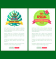 special offer order today off promo posters set vector image vector image