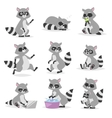 Cartoon raccoon vector image