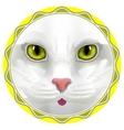 cat face eyes animal cute kitten bow hair facial vector image