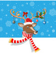 cute deer with antlers scarf holly bow baubles vector image vector image