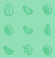 fruit outline isometric set vector image vector image