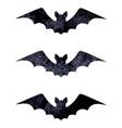 halloween silhouettes watercolor terrible bats vector image