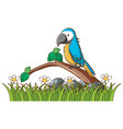 isolated picture parrot in garaden vector image vector image