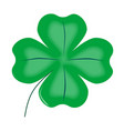 lucky four leaf shamrock vector image