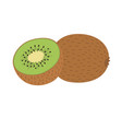 whole and half kiwi vector image