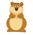 big plump hamsters with scared round brown eyes vector image vector image