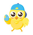 cute chick with egg easter vector image