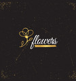 gold logo template vector image vector image