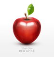 red apple with green leaf isolated vector image vector image
