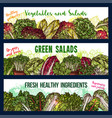 sketch banners of salads vegetables vector image vector image