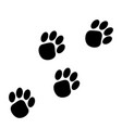 animal paw prints vector image vector image