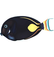 Black Fish vector image