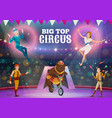 circus acrobats juggler and animals on arena vector image vector image
