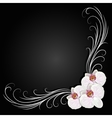 Delicate corner frame with orchid flowers vector image