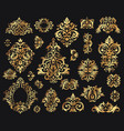 golden damask ornament vintage floral sprigs vector image