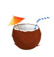 half coconut on white vector image