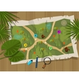 map jungle cartoon treasure hunter vector image vector image