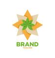 modern cannabis and oil logo vector image