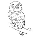 owl sitting on a branch outline drawing coloring vector image vector image