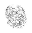 phoenix a mythological bird that cyclically vector image