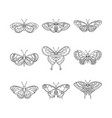 set of butterfly black outline vector image vector image