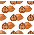 walnut seamless pattern traditional nuts nack vector image