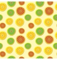 Orange lemon lime pattern Hand draw pattern vector image
