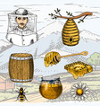 apiary farm hand drawn vintage honey making vector image