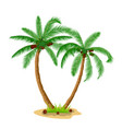 two coconut palm trees with grass vector image vector image