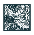 beautiful card with palm tree leaves vector image