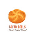 bread rolls icon vector image