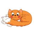 Cartoon plump red cat with kind muzzle stretching vector image vector image
