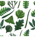 green leaves seamless pattern seamless vector image vector image