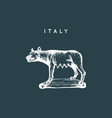 the capitoline wolf sculpture drawing rome vector image