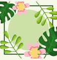 tropical leaves foliage natural and flowers vector image vector image