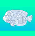 angel fish color fashion vector image vector image