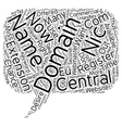 Central Nic Domains text background wordcloud vector image vector image