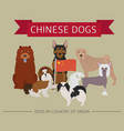 dogs by country of origin chinese dog breeds vector image vector image